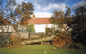 The author's boyhood home only narrowly survived the 87 storm. Edward Hanna, Author provided